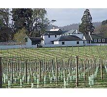 photoj Australia Tas-winery Photographic Print