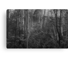 Experiments in Processing # 5 - Mount Wilson NSW - The HDR Experience Canvas Print