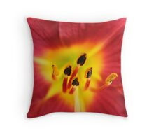 Red Yellow Vibrance Throw Pillow