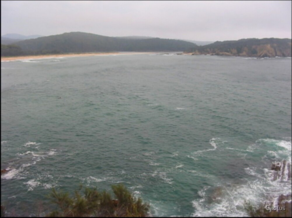 Look Out Point - Facing Beach (NSW, Australia) by Cactus
