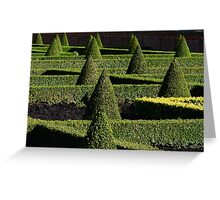 Parterre from France, in an English Country Garden Greeting Card