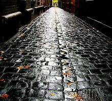 cobble stones by Leesa Habener