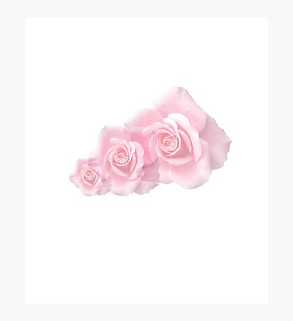 Mothers Day Roses 2 Photographic Print