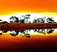 Marlo bush fire reflections by helmutk
