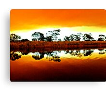 Marlo bush fire reflections Canvas Print