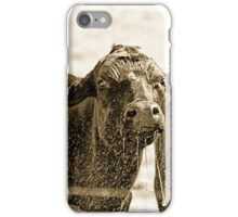 Thirsty Cows iPhone Case/Skin