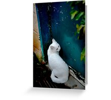 I thought I saw a ghost... Greeting Card