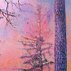 Pines at Dusk by Susan Wellington