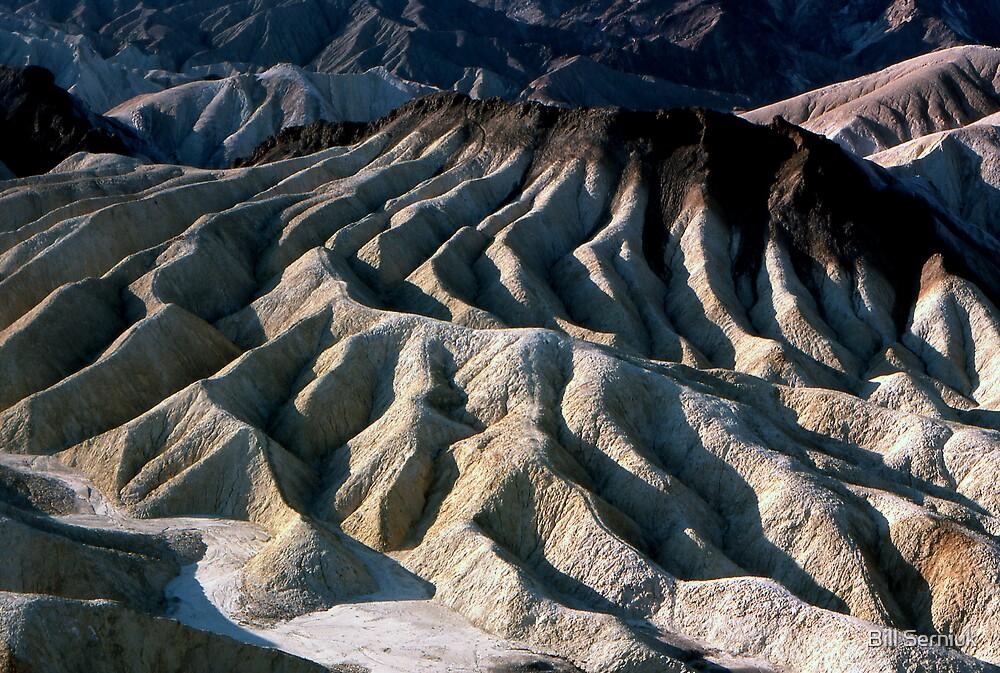 Desolation by Bill Serniuk