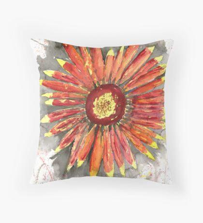 Indian Blanket Throw Pillow