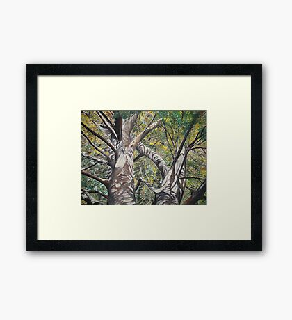 dappled sunlight Framed Print