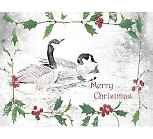 """Nostalgic Geese """"Merry Christmas"""" ~ Greeting Card Photographic Print"""