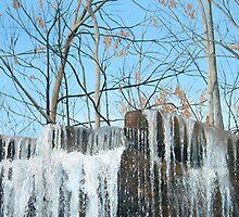 Rock Glen Falls by Bill Knapp