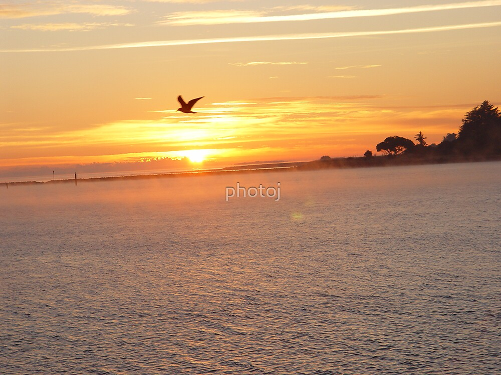 australia-tasmania devonport sunrise by photoj