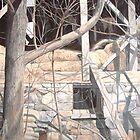 Bygone Barn by Bill Knapp