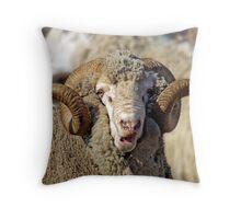 Shocked Sheep Throw Pillow