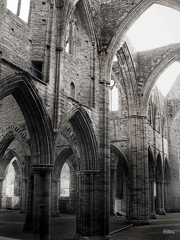Tintern Arches by Bilks
