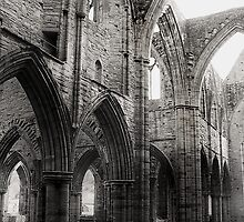Tintern Arches by Bilks