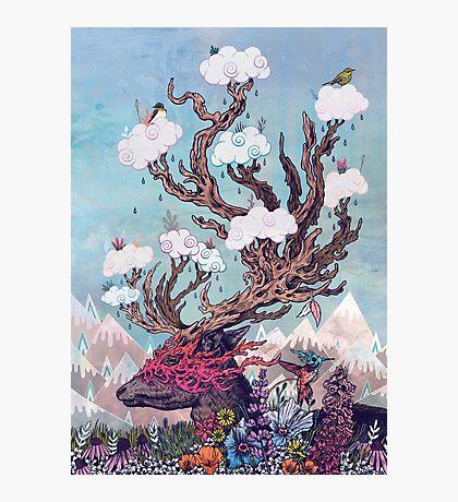 Journeying Spirit (deer) Photographic Print