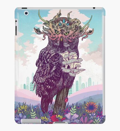 Journeying Spirit (Owl) iPad Case/Skin
