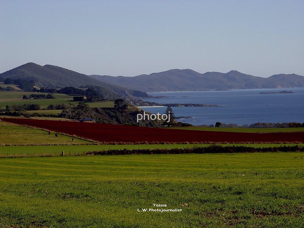 australia-tasmania countryside by photoj