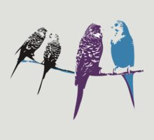 Budgie Banter by Joanna  Smail
