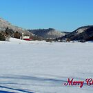 Merry Christmas #2 by WildThingPhotos