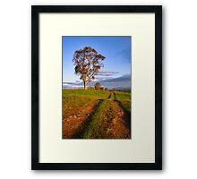 Drovers Run Framed Print