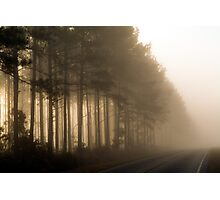 Kissed By Mist Photographic Print