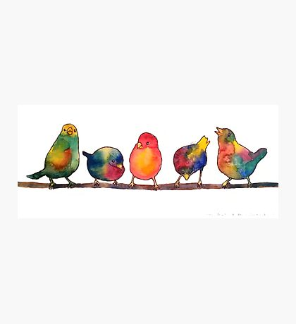 Sweet Watercolor Song Birds Photographic Print