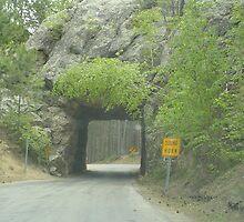 A Tunnel in the Road by DeBorah Davis, LMT