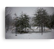 Ever Winter Greens Canvas Print