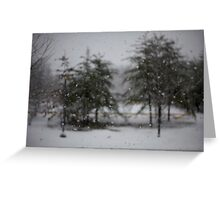Ever Winter Greens Greeting Card