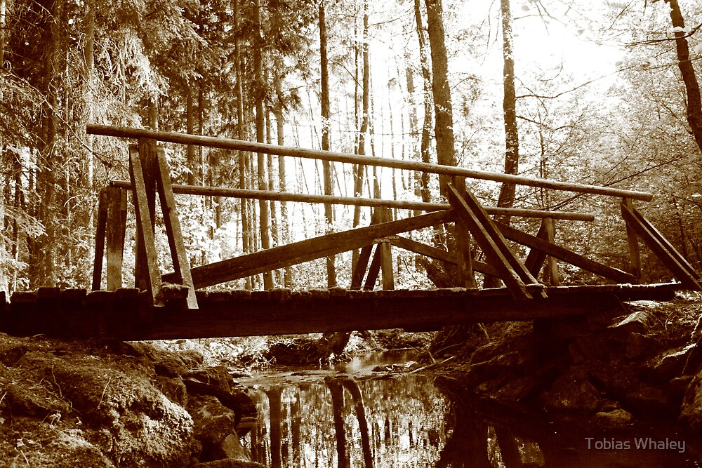 Broken Bridges and Burned Paths by Tobias Whaley