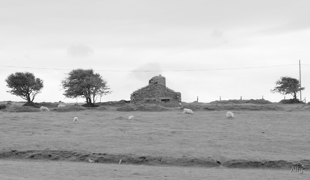 Ruin on the Moor by Alfy