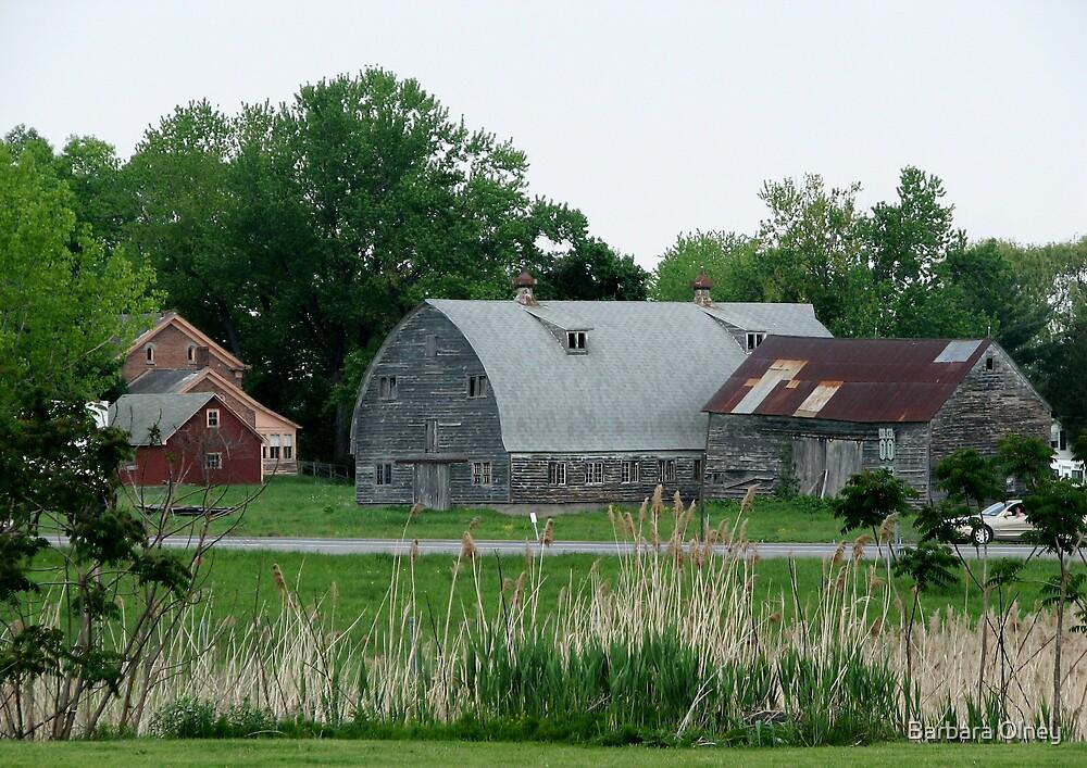Barn Upstate New York by Barbara Olney