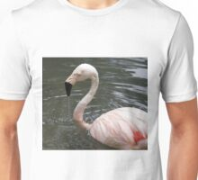 Bird Bath Unisex T-Shirt