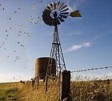 windmill by nicksay