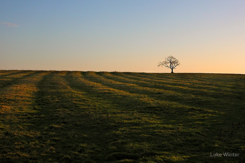 Sunset over a furrowed field by Luke Winter