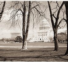 The U.S. Capital in Sepia by Randyppdd