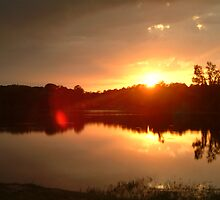 Lake View Sunset by Quintin08