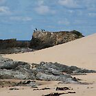 Rocks and Sand, Pyoot Bay by BevB