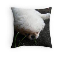 precious petunia Throw Pillow