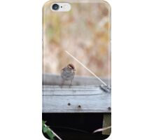 Cheerful Chipping Sparrow iPhone Case/Skin