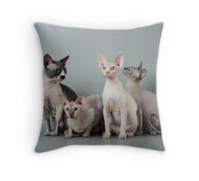 Flesh Cats Throw Pillow