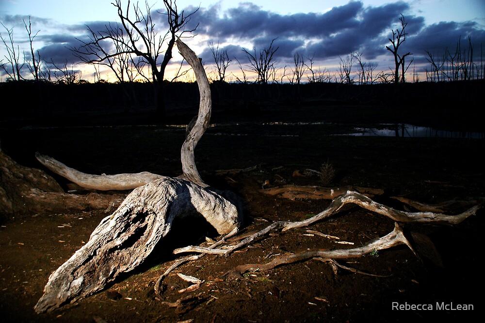 Last Light by Rebecca McLean