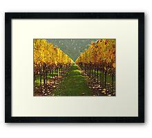 'Autumn vineyard' Framed Print
