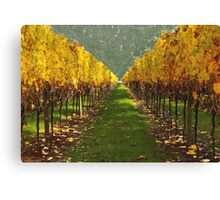 'Autumn vineyard' Canvas Print