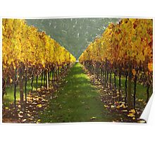 'Autumn vineyard' Poster