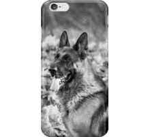 A Noble Protector  iPhone Case/Skin